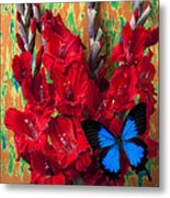 Red Gladiolus And Blue Butterfly Metal Print