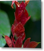 Red Inferno Metal Print