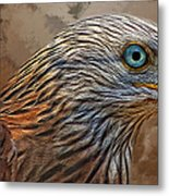 Red Kite - Featured In The Groups - Spectacular Artworks And Wildlife Metal Print