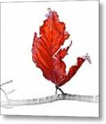 Red Leaf Of Autumn On White Metal Print