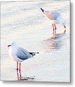 Red Legs And Lipstick Metal Print