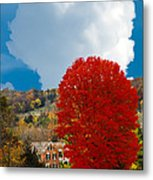 Red Maple White Cloud Metal Print