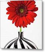 Red Mum In Striped Vase Metal Print
