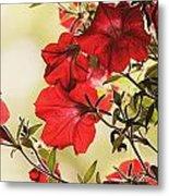 Red Petunias Metal Print