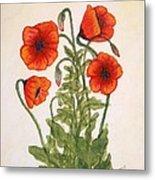 Red Poppies Watercolor Painting Metal Print