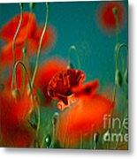 Red Poppy Flowers 05 Metal Print