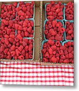 Red Raspberries Are Here Metal Print