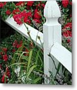 Red Rhododendron And White Post Metal Print