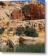 Red Rock Canyon The Tank Metal Print