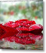 Red Rose Reflections Metal Print