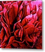 Red Ruffles Metal Print