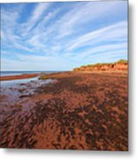 Red Sands Low Tide Metal Print