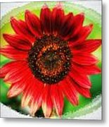 Red Sun Flower Metal Print