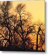 Red Tree Metal Print