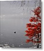 Red Tree On The Lake Front Metal Print