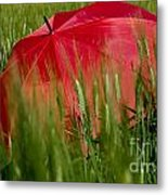 Red Umbrella On The Wheat Field Metal Print
