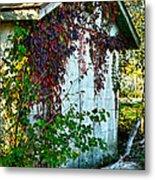 Red Vine Shed Metal Print