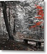 Reds In The Woods Metal Print