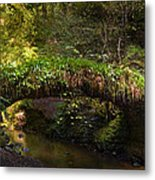 Reelig Bridge And Grotto Metal Print