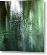 Reflect Upon Green Metal Print