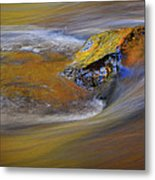 Reflected Autumn Color Metal Print