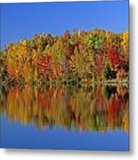 Reflected Autumn Trees In Simon Lake Metal Print