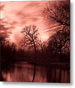Reflected Metal Print by Rossi Love