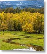 Reflected Seasons Metal Print