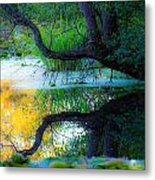 Reflected Tree In Pastel Landscape Metal Print