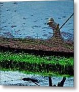 Reflecting On Rice Metal Print