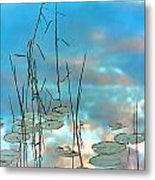 Reflection - Reeds And Pond Lilies Metal Print