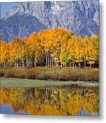 Reflection At Oxbow Bend Metal Print