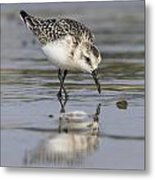 Reflection In Sand Metal Print