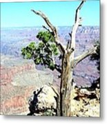 Reflection In The Canyon Metal Print