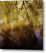 Reflection Metal Print by Joana Kruse