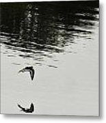 Reflection Of Flight Metal Print