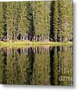 Reflections Along Summit Lake Metal Print