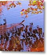 Reflections And Currents Metal Print