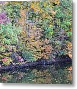 Reflections Of A Tapestry 2 Metal Print