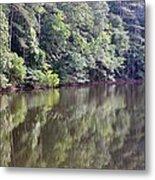 Reflections On Aldridge Lake Metal Print
