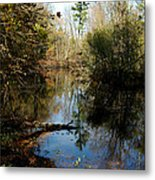 Reflective River Thoughts Metal Print