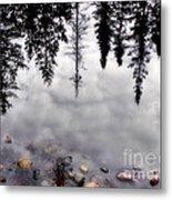 Reflective Wetlands Metal Print