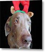 Reindeer Doggie Metal Print