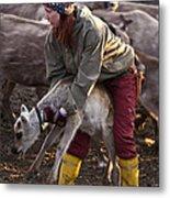 Reindeer Farm Work Metal Print