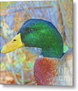 Relaxing By The Pond Metal Print