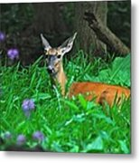 Relaxing In The Morning Metal Print