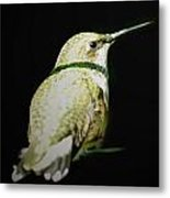 Resting For Migration Metal Print
