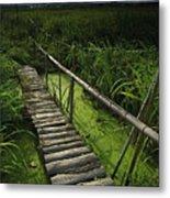 Rice Bridge Metal Print