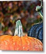 Rich Autumn Colors Metal Print