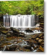 Ricketts Glen Waterfall Oneida Metal Print